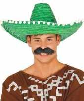 Carnaval kleding sombrero groen
