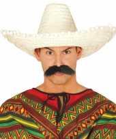 Carnaval kleding sombrero rood 10148187