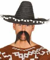 Carnaval kleding sombrero zwart